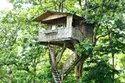 Tree House Cost Kolkata