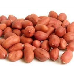 Bold Peanut Kernel, Packaging Type: Sacks, Packing Size: 5 - 50 Kg