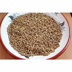 Coriander Seeds, Packaging Size: 100 to 200 g