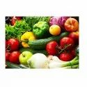 Vegetables Cold Storage Service, 0-8 Deg C, Capacity / Size Of Storage: 1000 Mt