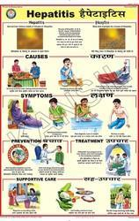 Hepatitis For Prevent Diseases Chart