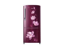 RR20M172YR7 1 Door Refrigerator with Smart Digital Inverter Technology 19