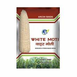 White Moti Hybrid Maize Seed