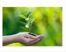 Environmental Solutions Services