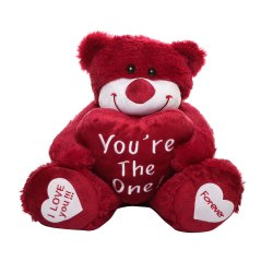 Plush Multicolor Best Quality Teddy Bear Soft Toys