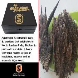 Agarwood Apari.SP-023