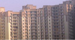 1BHK Apartment Construction Service