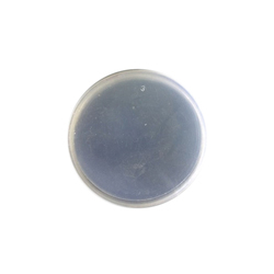 83 mm Transparent  PET Jar Cap