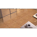 Ceramic Double Charge Floor Vitrified Tiles, 6 - 8 Mm