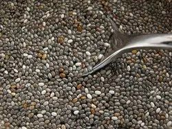 Chia Seeds, Pack Size: 25 Kg