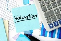 Shares Valuation Service