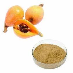 Loquat Extract