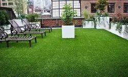 25mm Artificial Grass