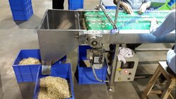 Stainless Steel Cashew Peeling Machine