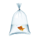 Leak Proof Fish Poly Bags