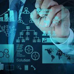 Business Management Consultancy Services