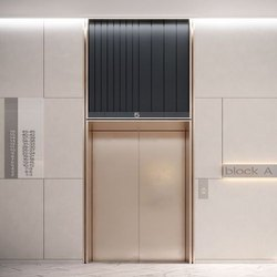Stainless Steel SS Automatic Elevator Door