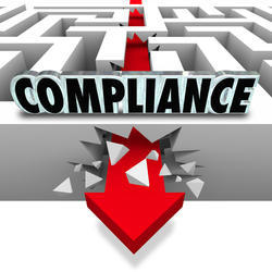 Consulting Firm Private Limited Regulatory Compliance''S