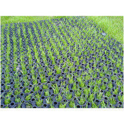 Grass Mat At Best Price In India