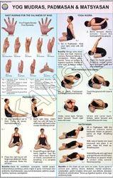 Yog Mudras, Padmasan,& Matsyasan For Yoga Chart