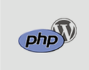 Php Wordpress Course
