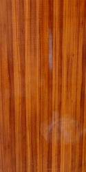 Wooden Shade PVC Door