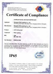IP 65 Certification