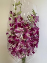 Packs of 20 Purple Orchid Flower, 20 Sticks