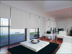 Modern Polyester Roller Blinds for Window Shade