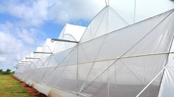 Drip Lock Cool Greenhouse Covering Film - Ginegar Brand