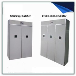 TM&W - Industrial Incubator 15000 plus Hatcher  5000 eggs capacity