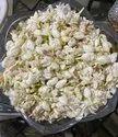 White Mogra Flower