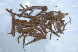 Rasna Mool  - Pluchea Lanceolata - Rayasan