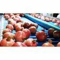Pomegranate Grading Machine
