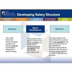 Compensation Structuring Service, India