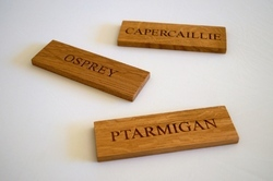 Laser Engraved Wood Name Plate