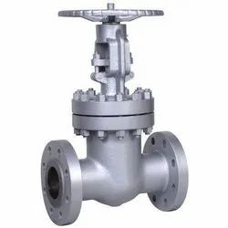 CG Stainless Steel IBR, Non IBR Globe Valve, For Water, Oil, Air, for Industrial