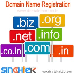 Domain Name Registration Service