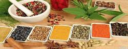 Ayurvedic Pharma Franchise in Bangalore