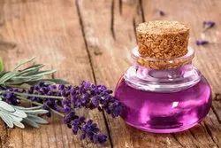 Lavender Essential Fragrances