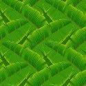 4.5 Micron Banana Leaf Design Film