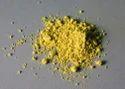 Natural Quercetin Powder