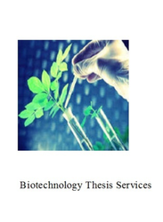 MS Thesis Writing Services