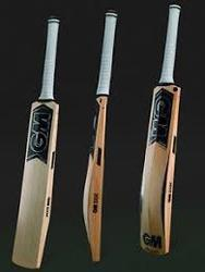 GM Chrome 909  English Willow Cricket Bat