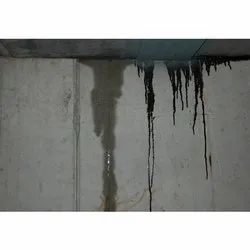 Wall Water Proofing Services