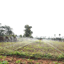 Spray Irrigation System - 500 Sqm