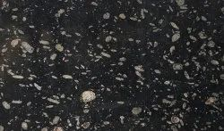 Autumn Black Granite