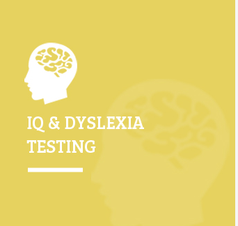 Dyslexia Treatment Services