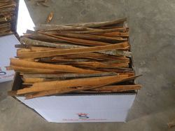 Paper Cassia, Packaging Size: 10 kg