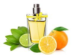 Citrus Fruit Fragrance